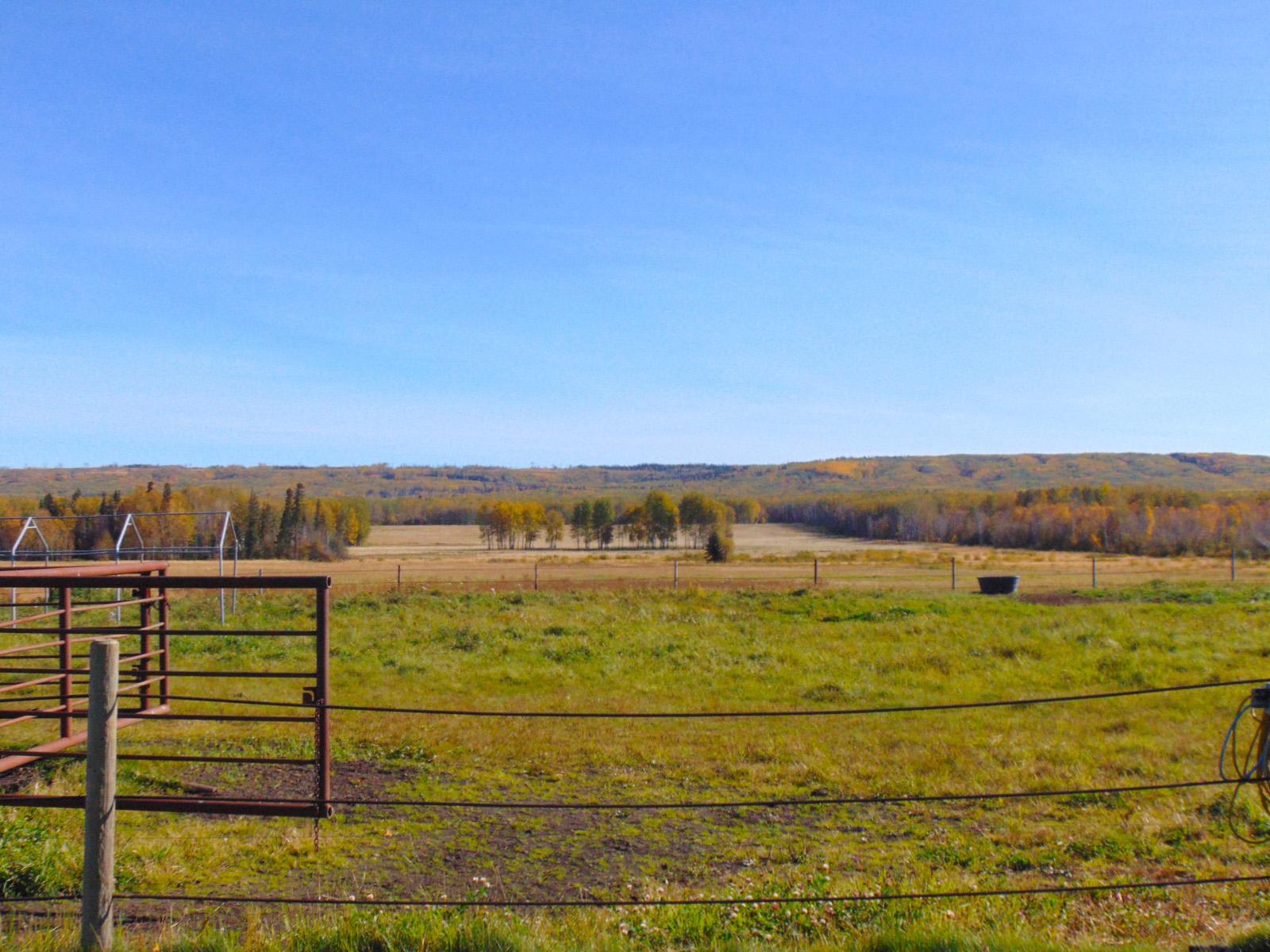 Lazy w ranch 022
