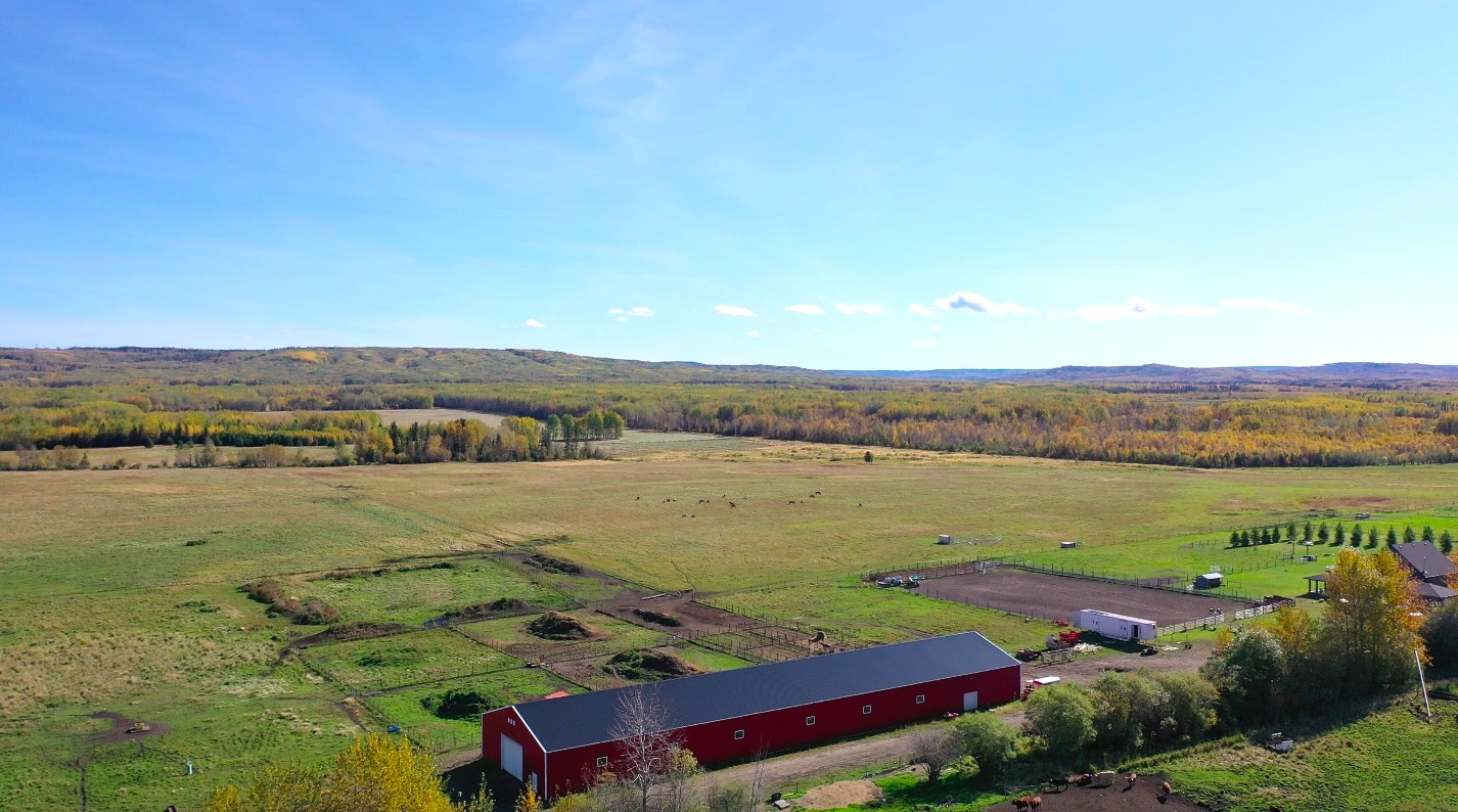 Lazy w ranch 099