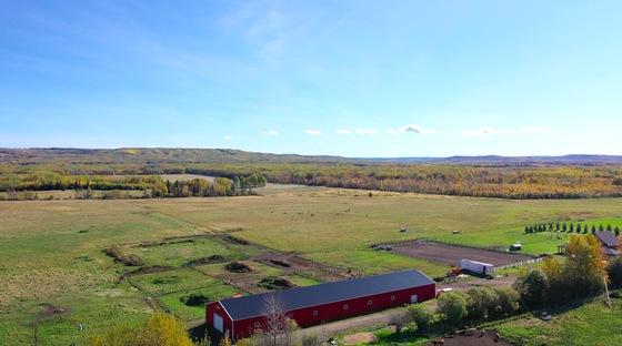 Thumb lazy w ranch 099