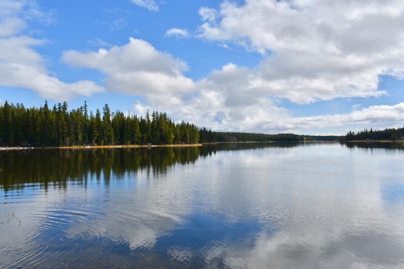 Lakefront Log Home and Acreage - Lessard Lake - Anahim Lake