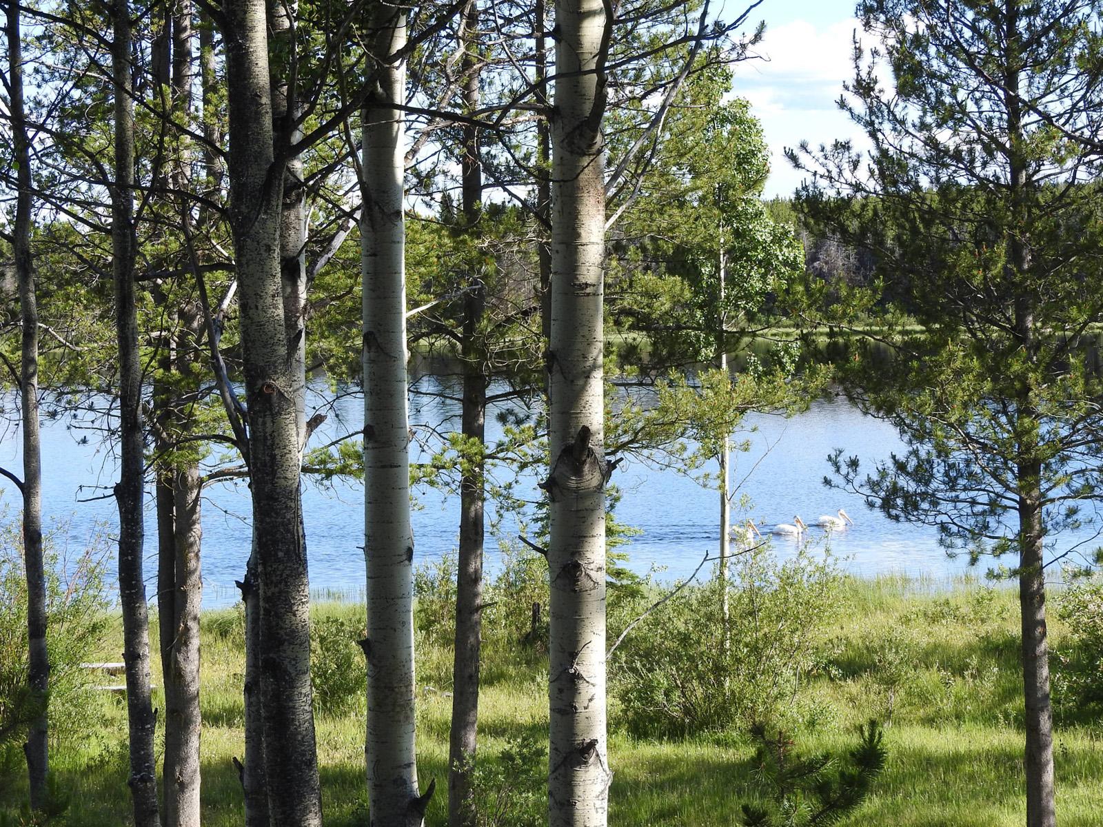 Lessard lake 04