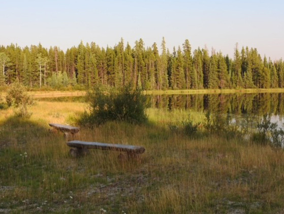 Thumb lessard lake 05