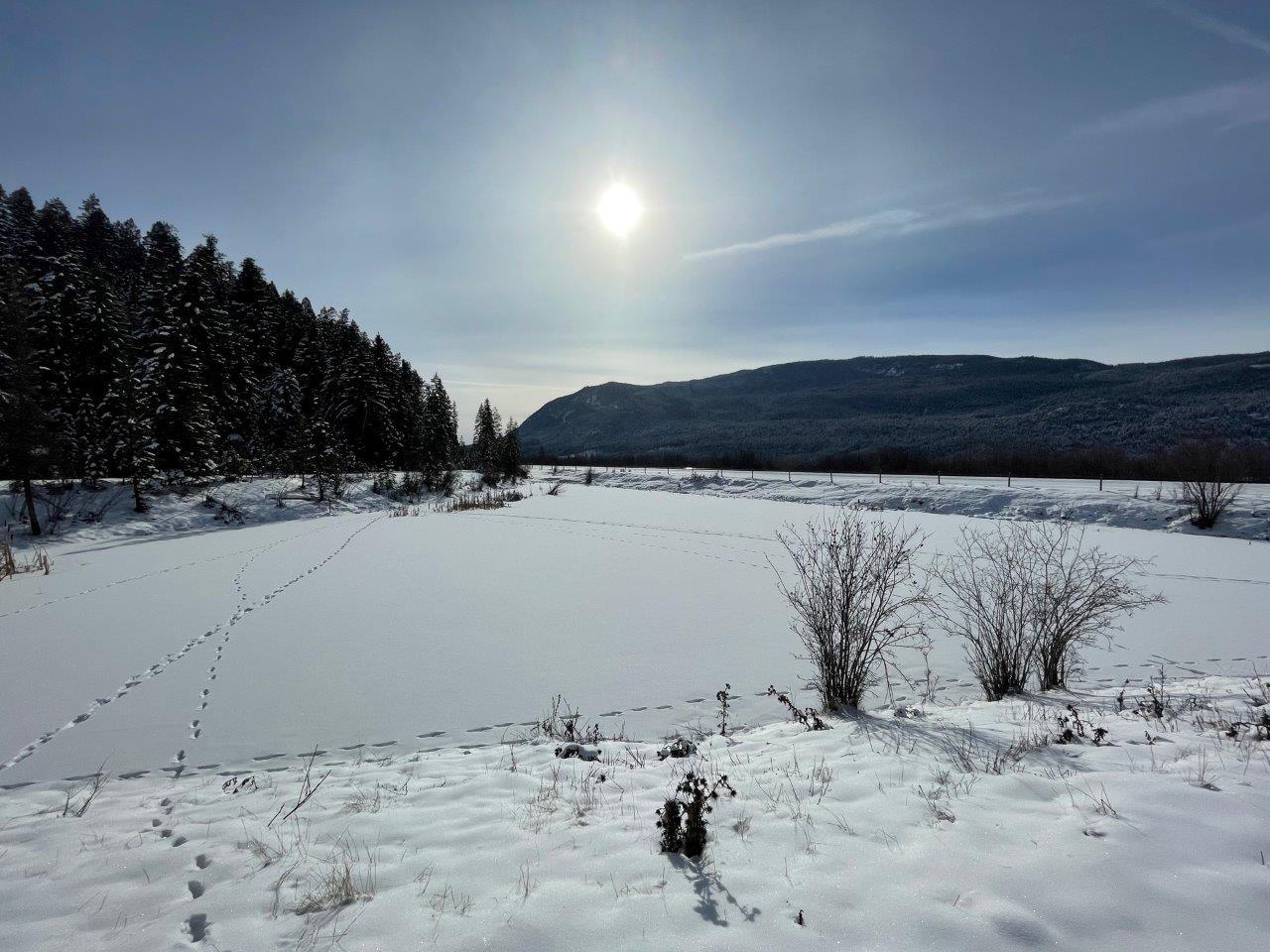 Columbia valley edgewater 10