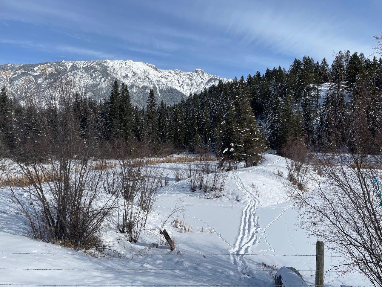 Columbia valley edgewater 14