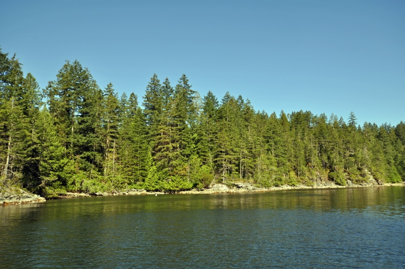 Green bay nelson island 04