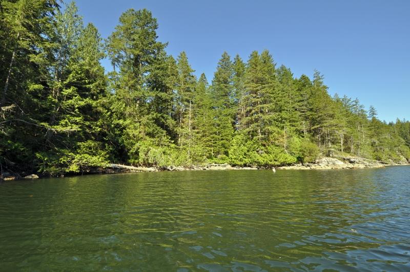 Green bay nelson island 11