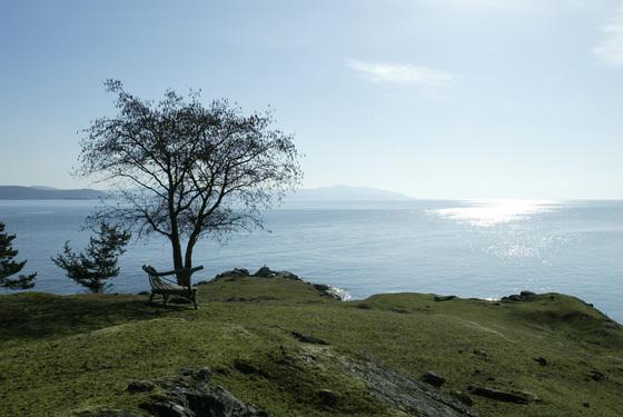 Thumb sidney island 20