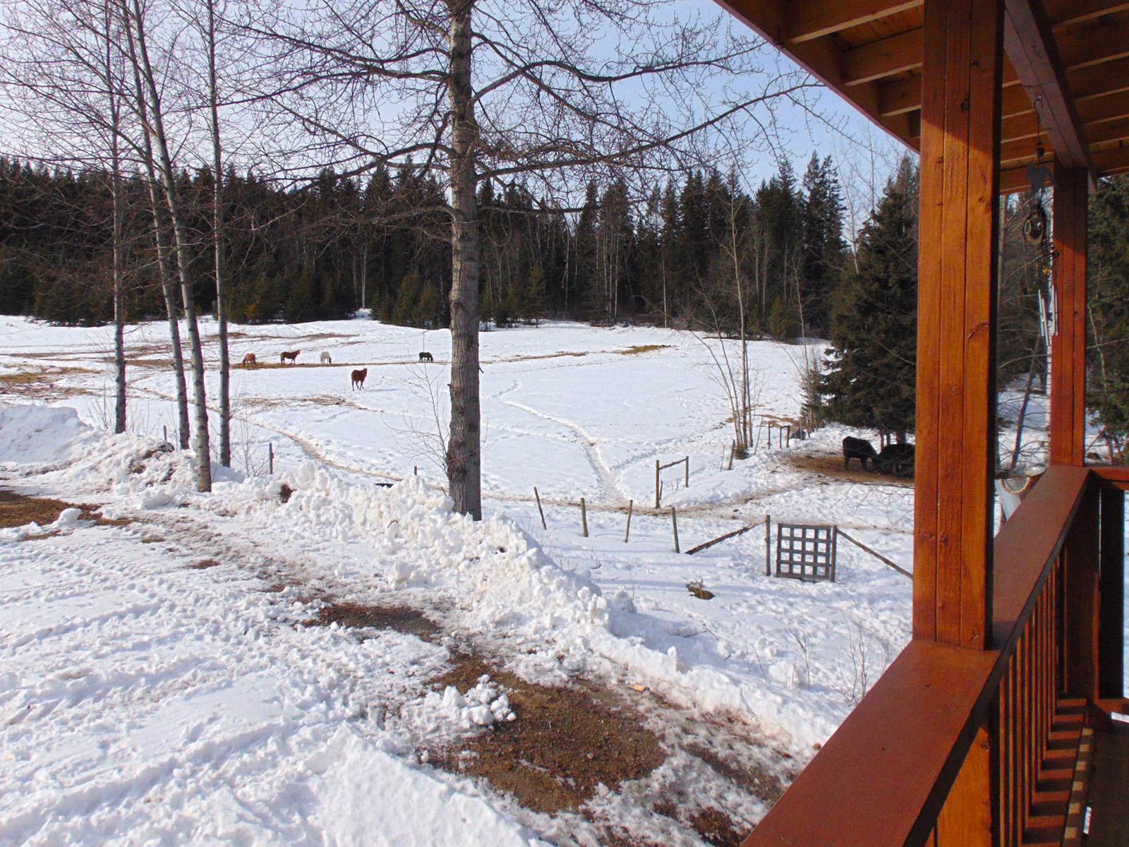 Quesnel farm 51