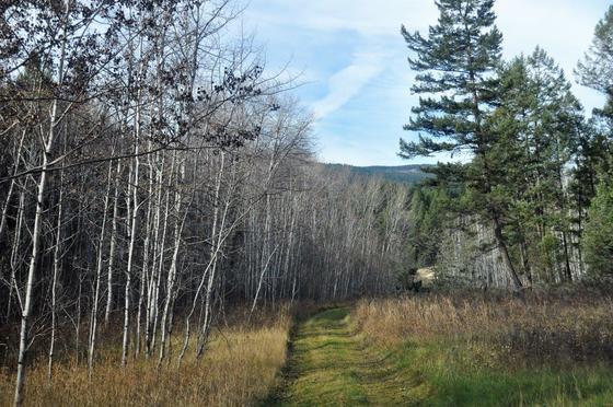 Thumb edgewater recreational acreage 05
