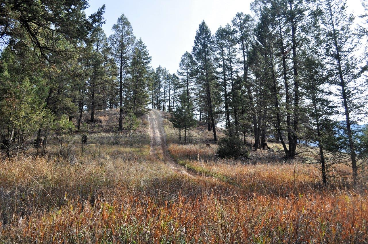 Edgewater recreational acreage 07