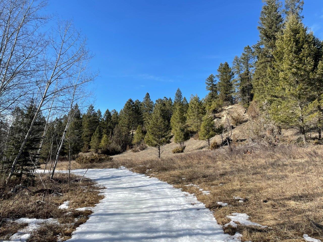 Edgewater recreational acreage 15