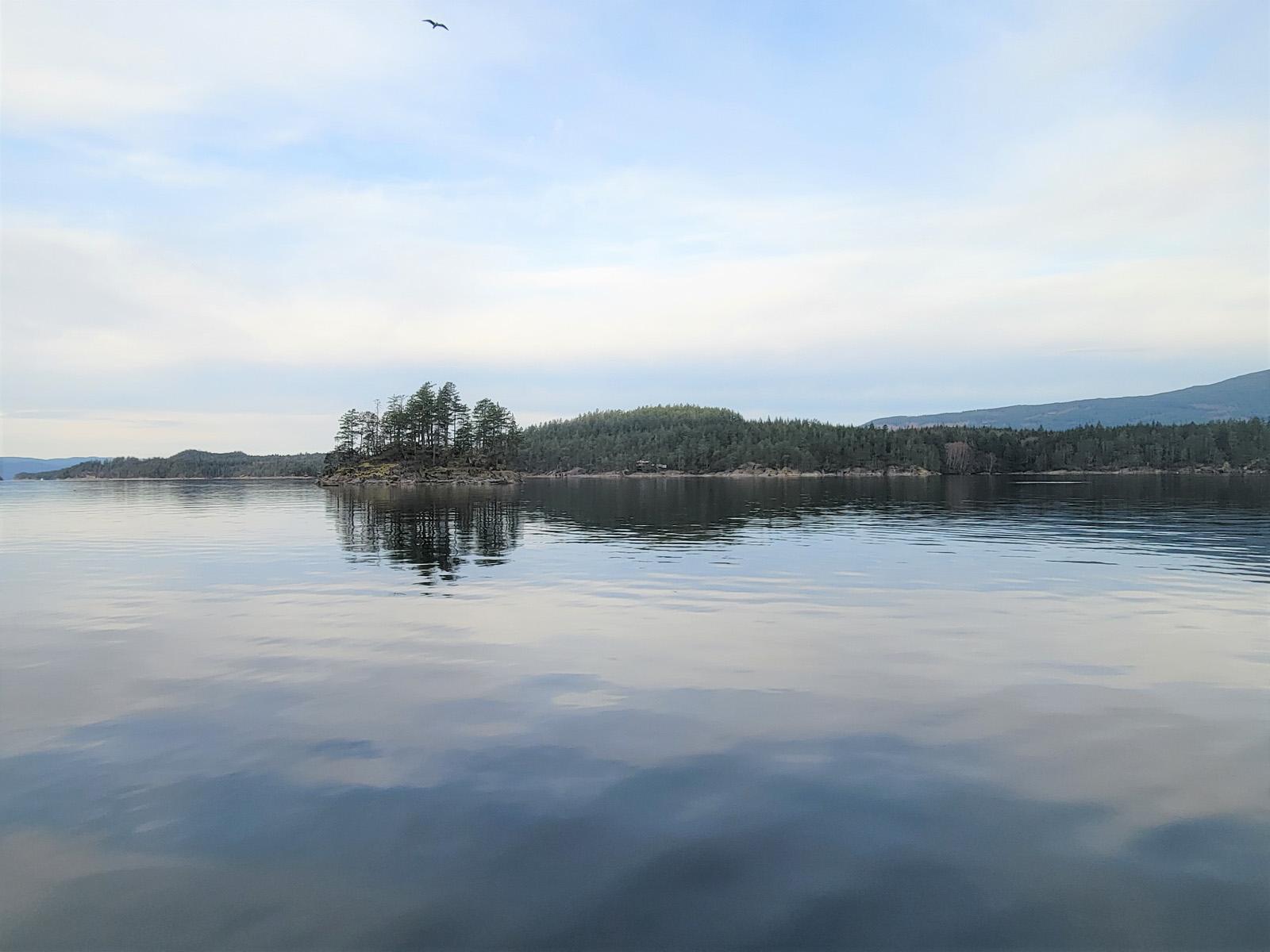 Nelson island 02