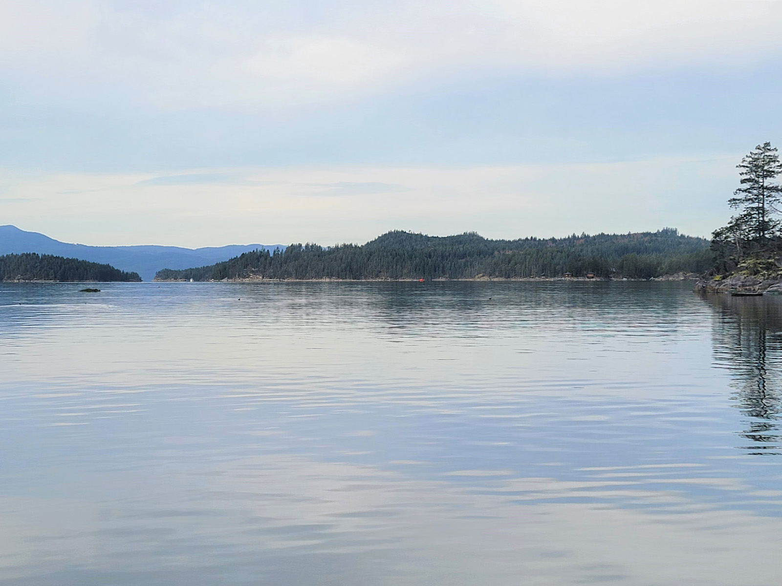 Nelson island 05
