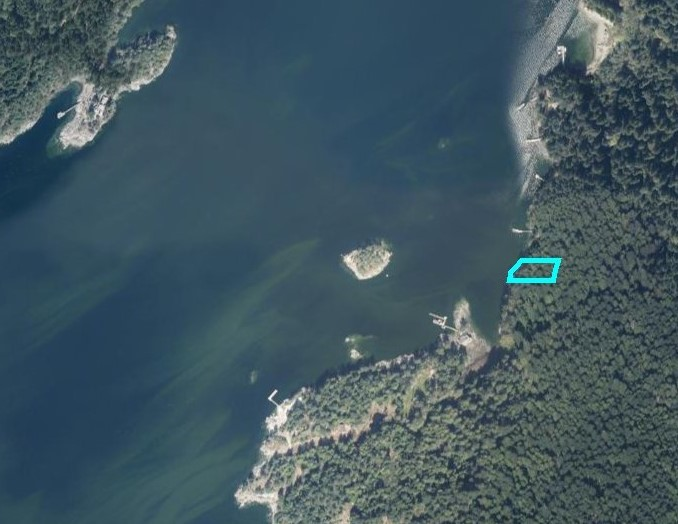 Nelson island 09
