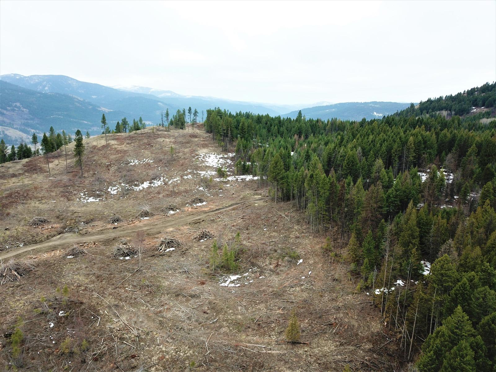 Hardy mountain acreage 04