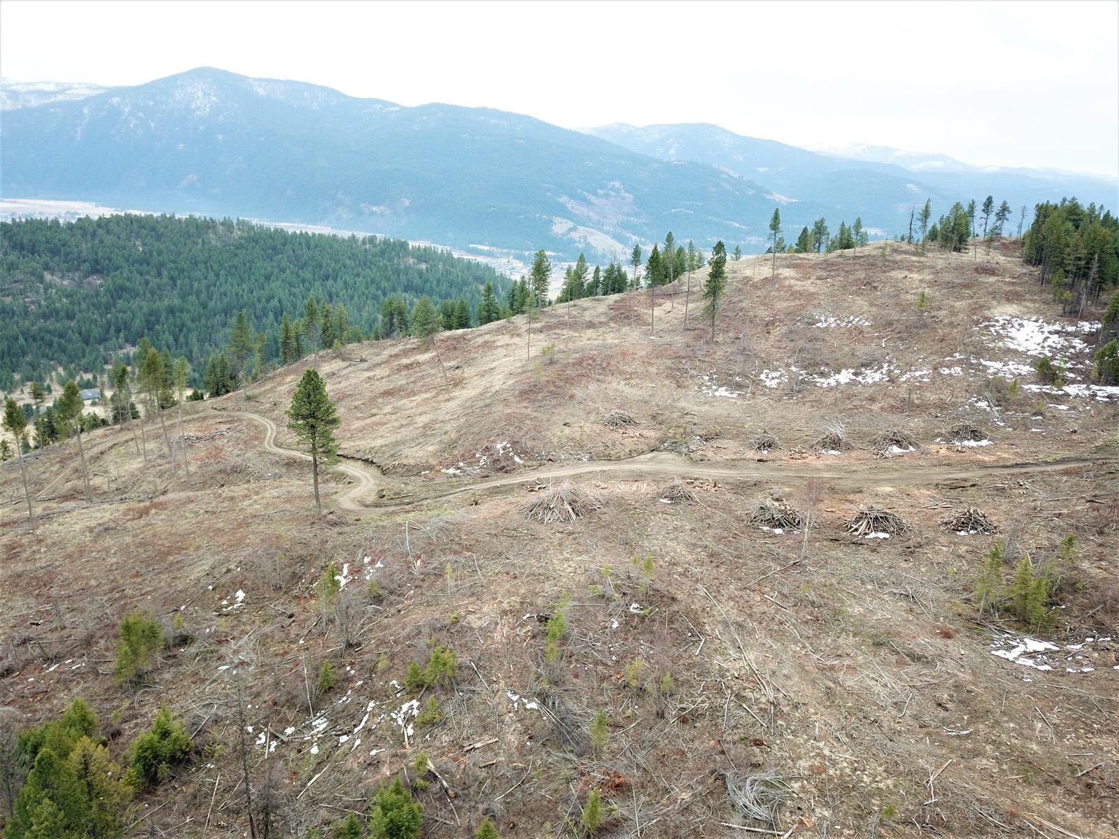 Hardy mountain acreage 05
