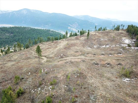 Thumb hardy mountain acreage 05