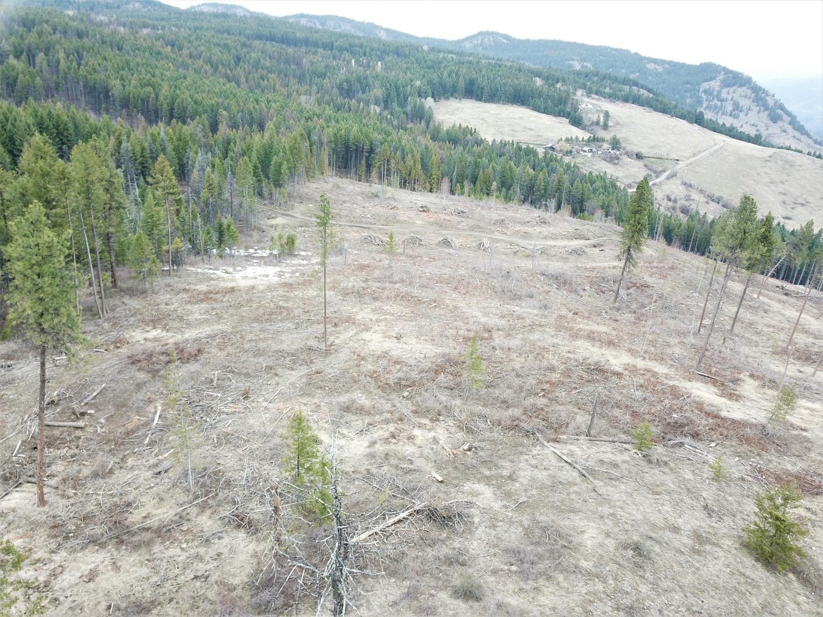Hardy mountain acreage 07