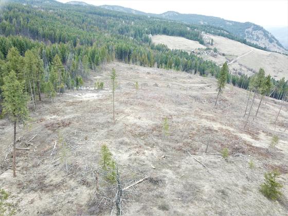 Thumb hardy mountain acreage 07