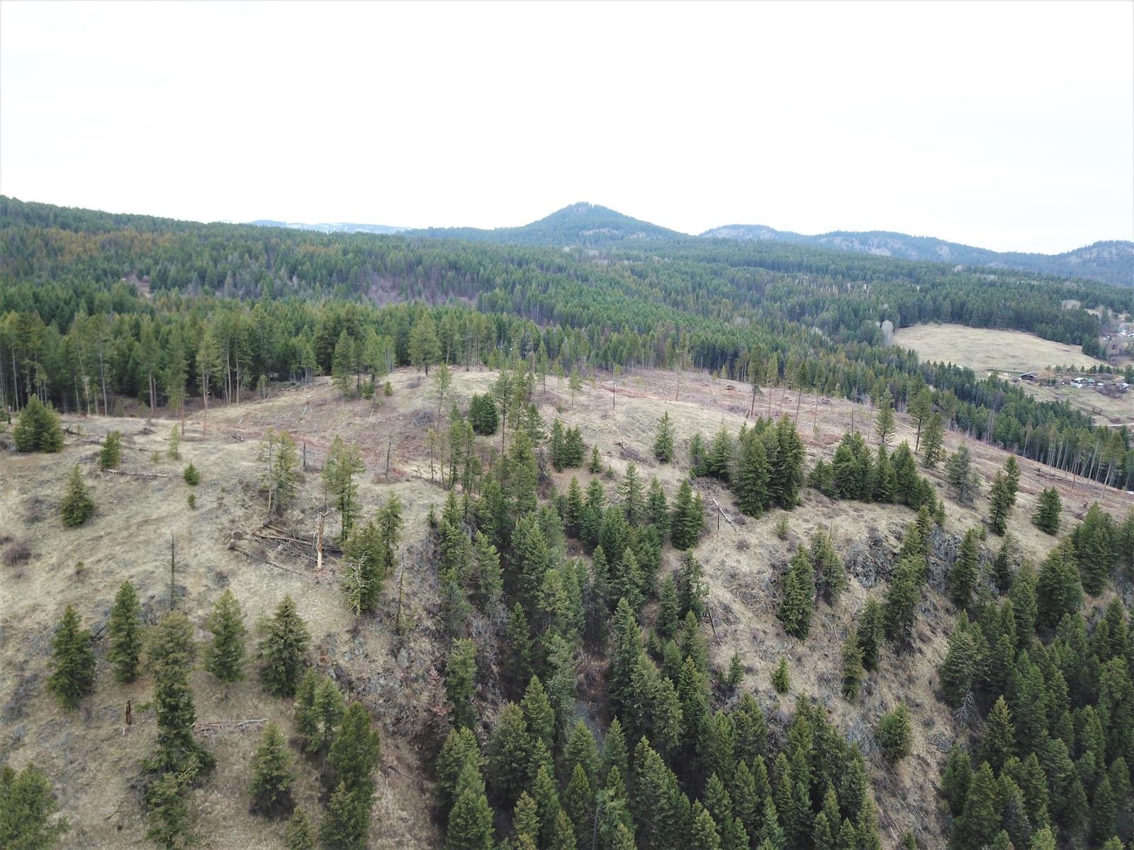 Hardy mountain acreage 09