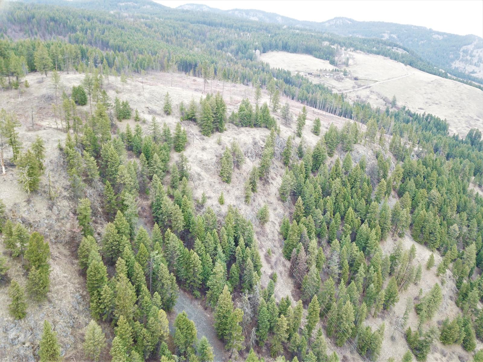 Hardy mountain acreage 10