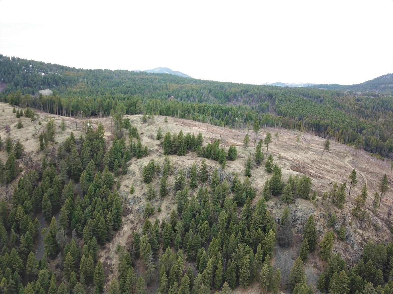 Hardy mountain acreage 11