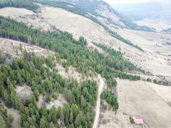 Thumb hardy mountain acreage 12