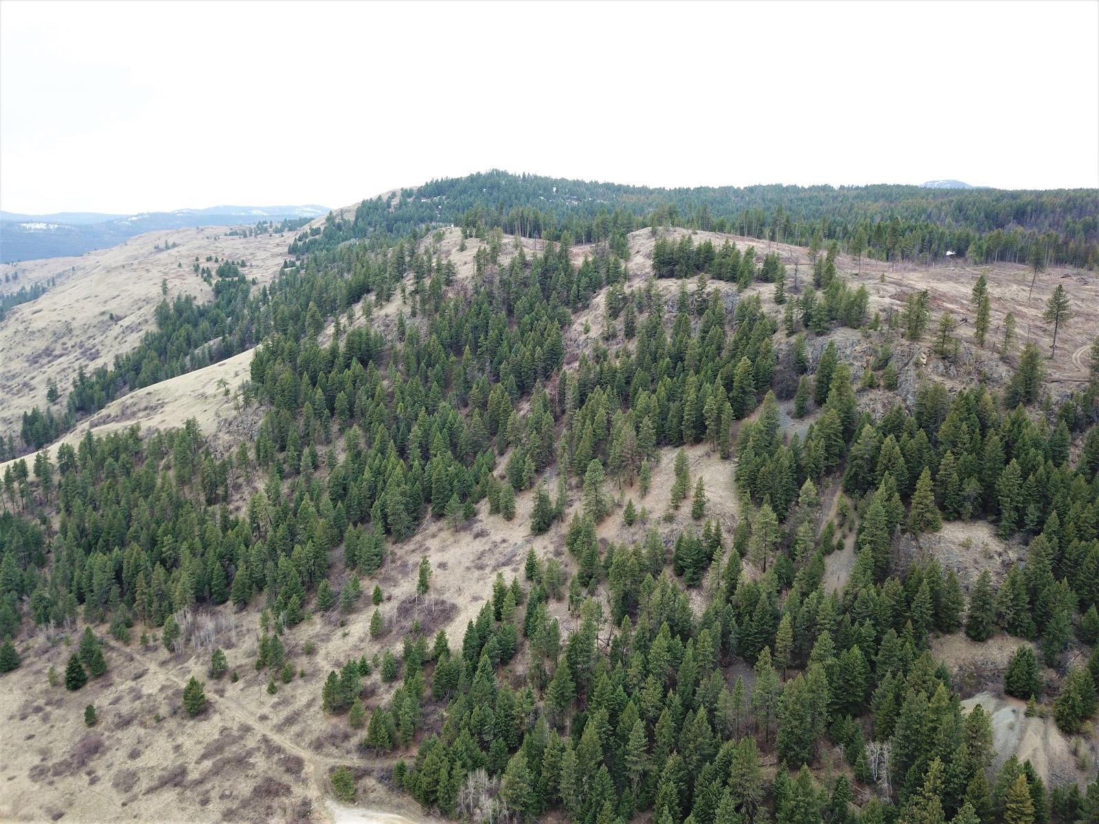 Hardy mountain acreage 15