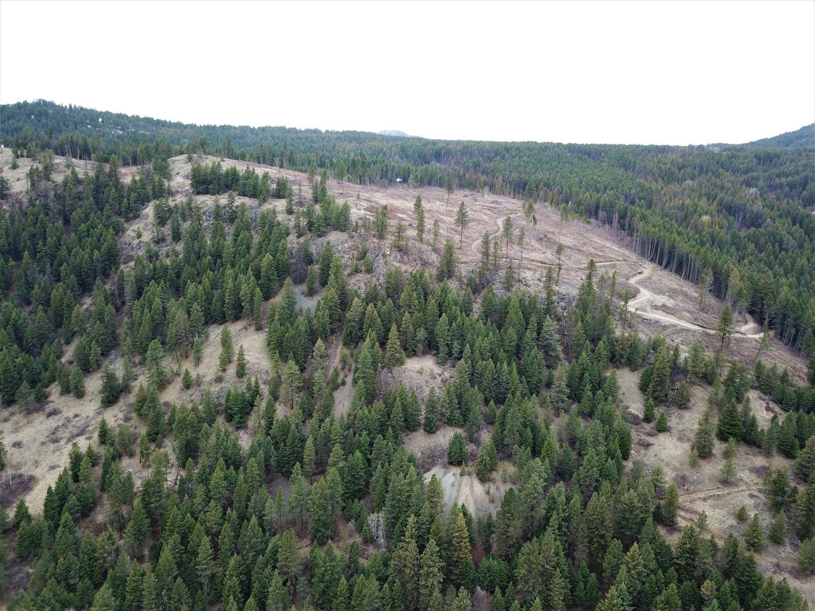 Hardy mountain acreage 16