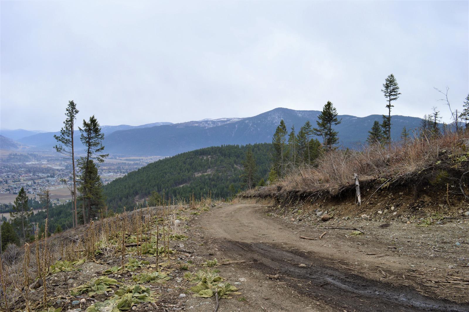 Hardy mountain acreage 21