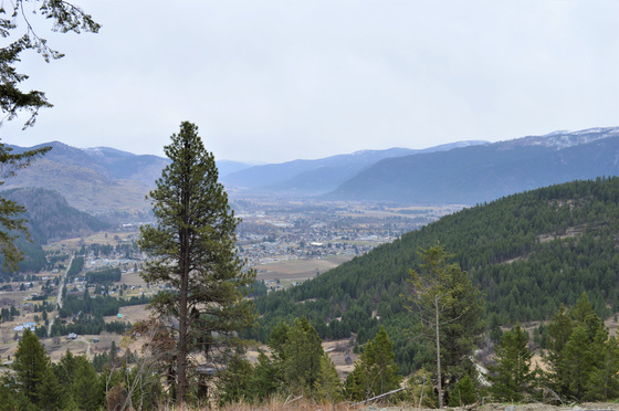 Thumb hardy mountain acreage 22