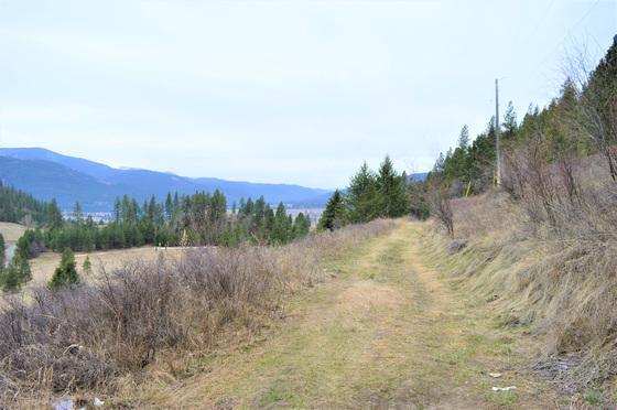 Thumb hardy mountain acreage 24