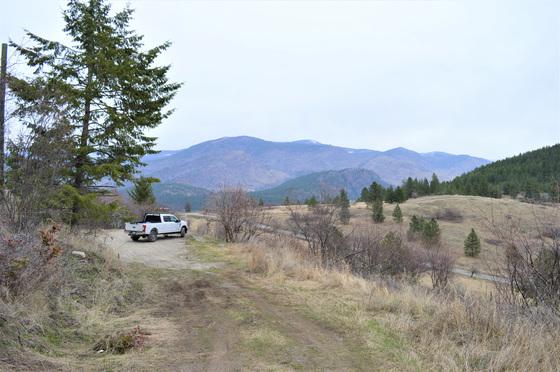 Thumb hardy mountain acreage 25