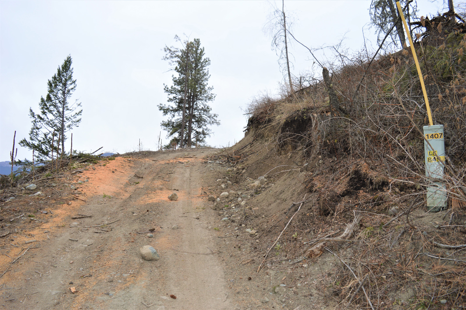 Hardy mountain acreage 27