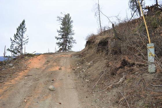 Thumb hardy mountain acreage 27