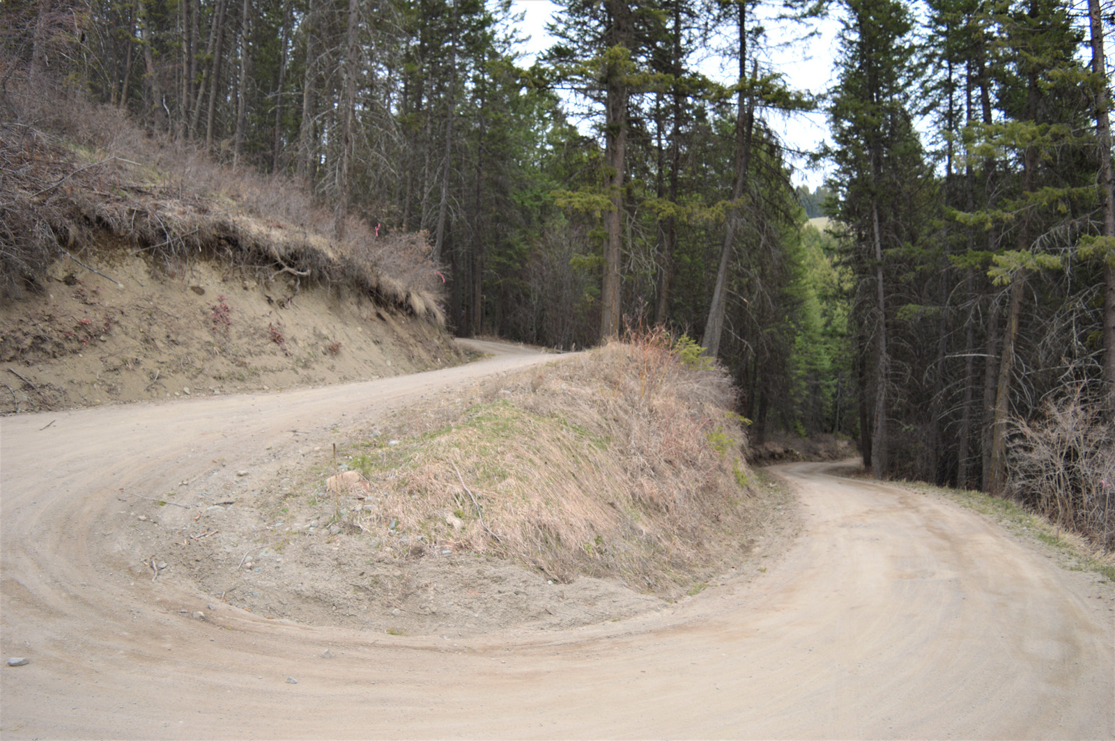 Hardy mountain acreage 28
