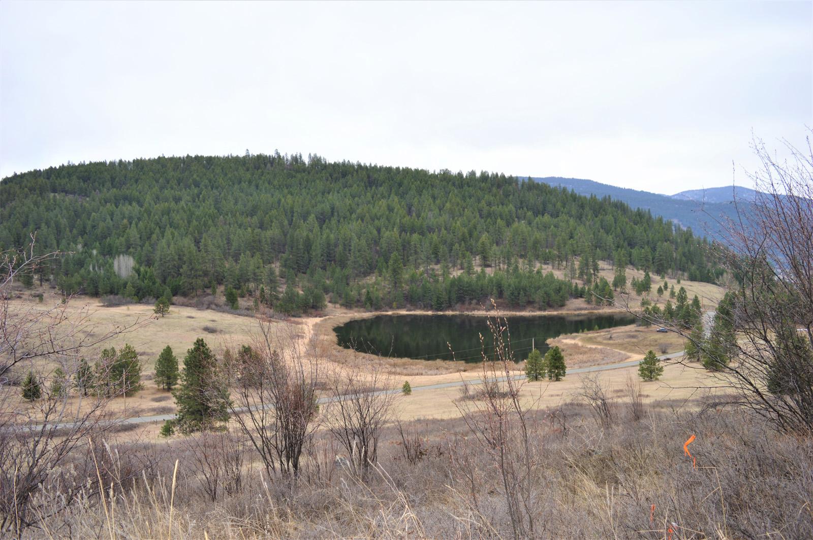 Hardy mountain acreage 31