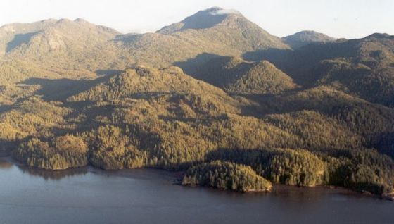 118 Acre Oceanfront near Prince Rupert, BC