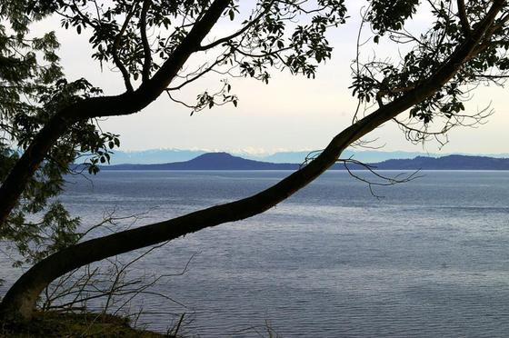 Thumb sidney island 05