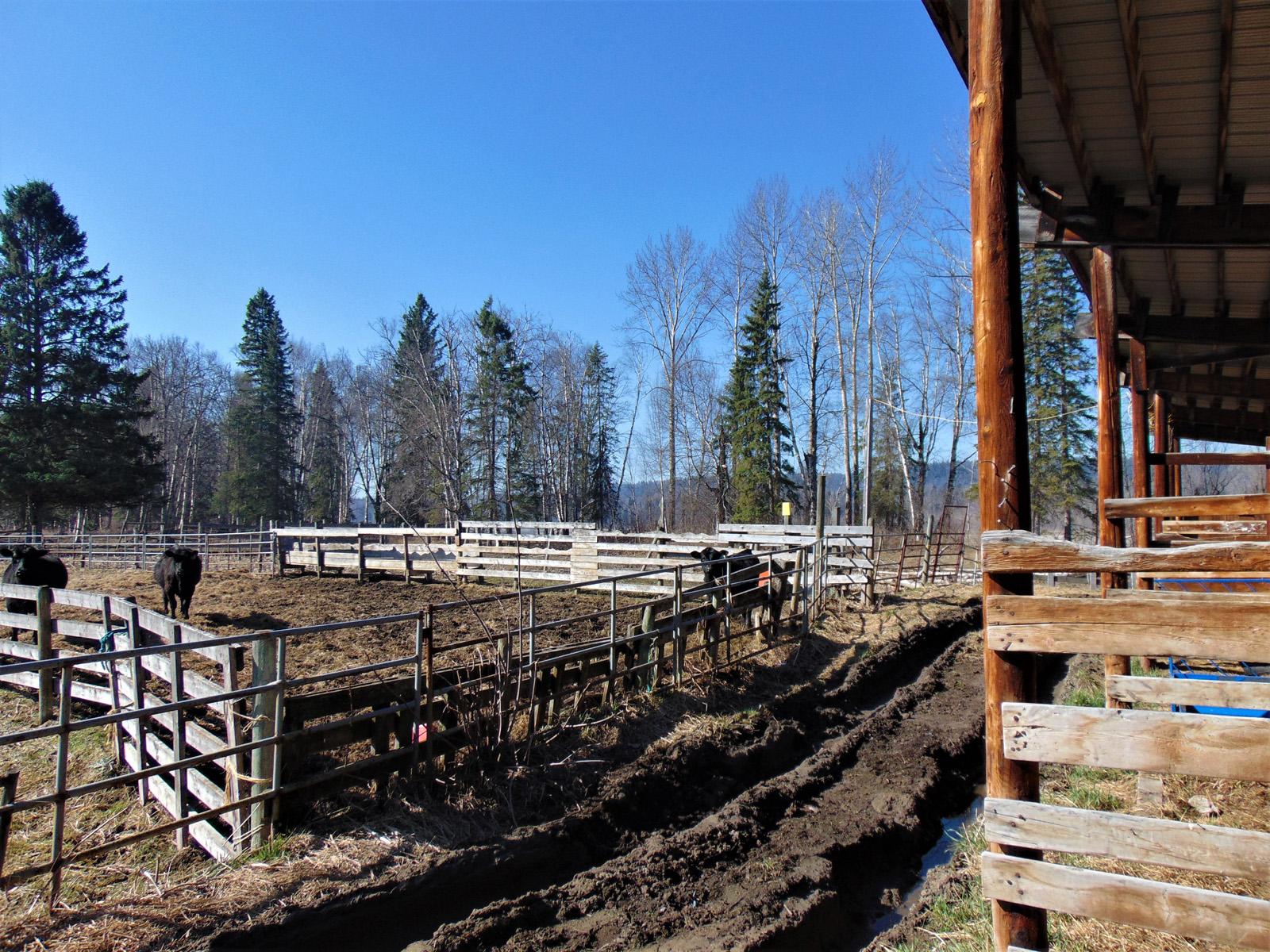 Prince george farm 42