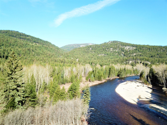 Pristine Riverfront Property with Timber - Beaverdell, BC