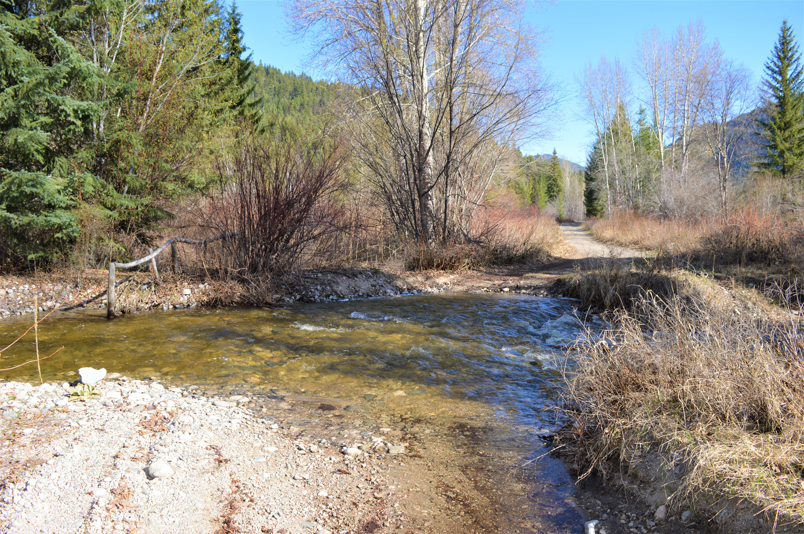 Beaverdell riverfront acreage 24