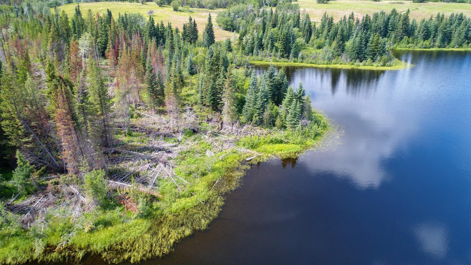 Lund lake 08