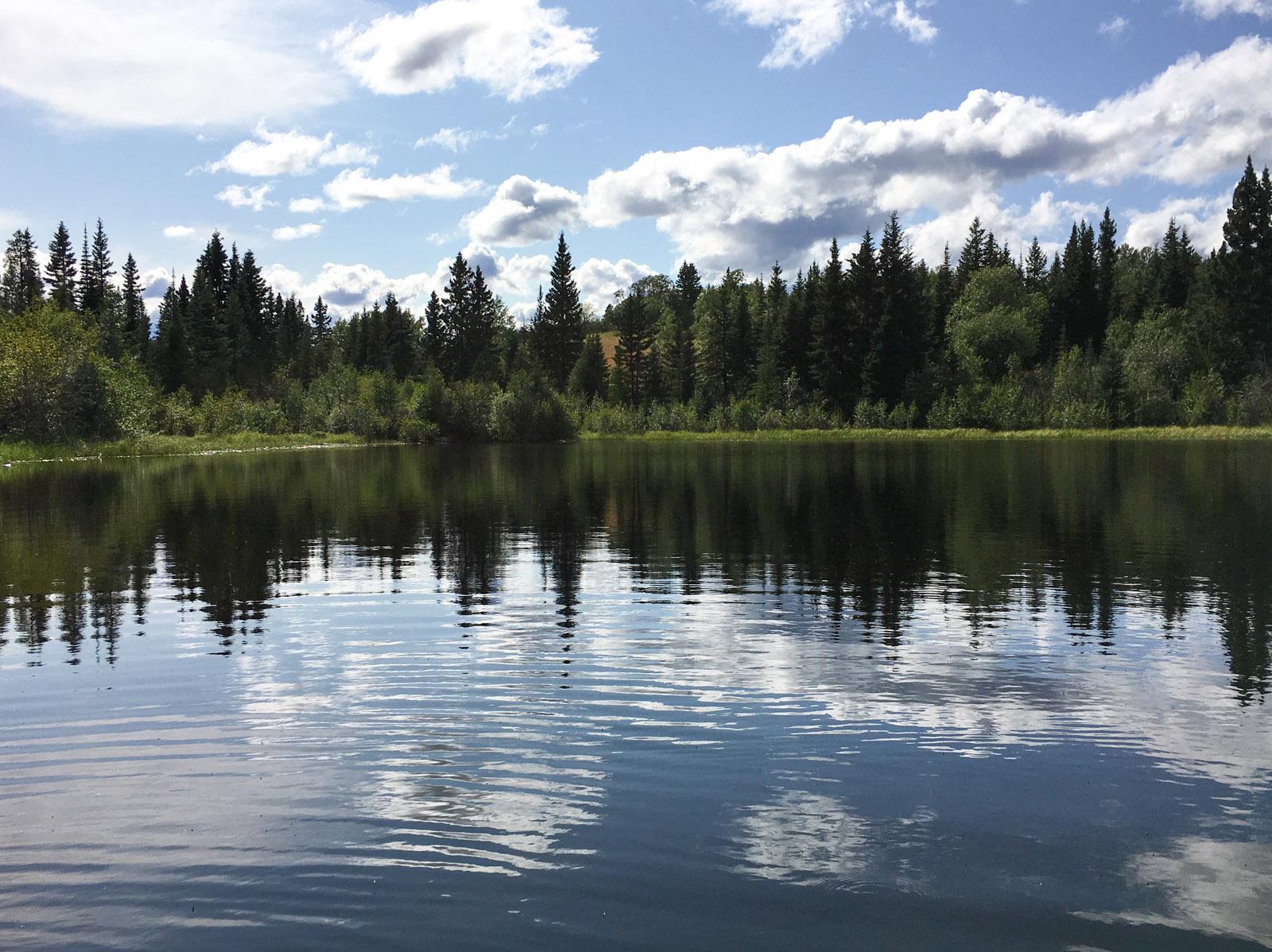 Lund lake 15