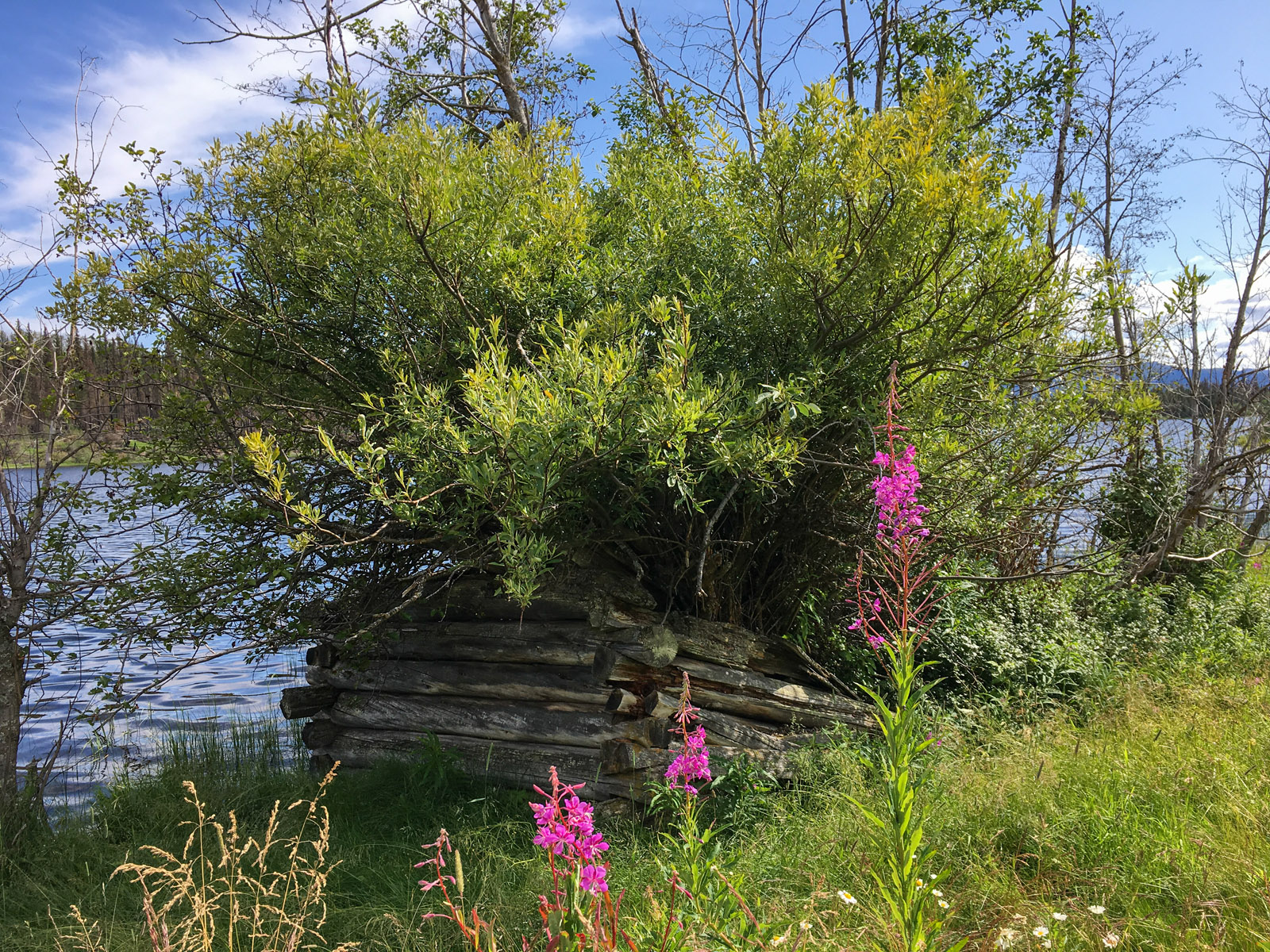 Lund lake 18