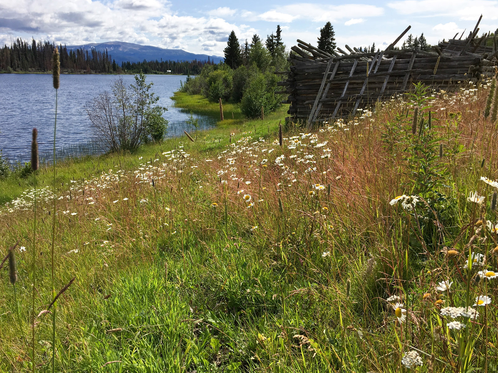 Lund lake 20