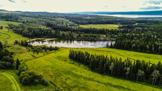 Wistaria Cattle Ranch - Ootsa Lake