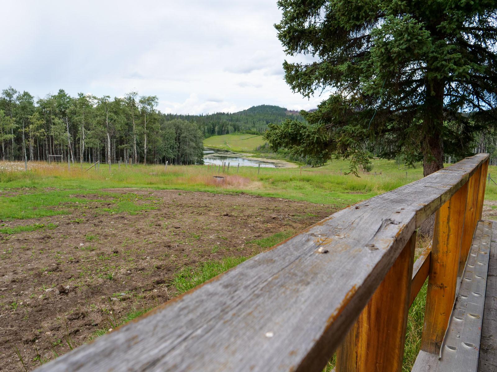 Wistaria cattle ranch 15