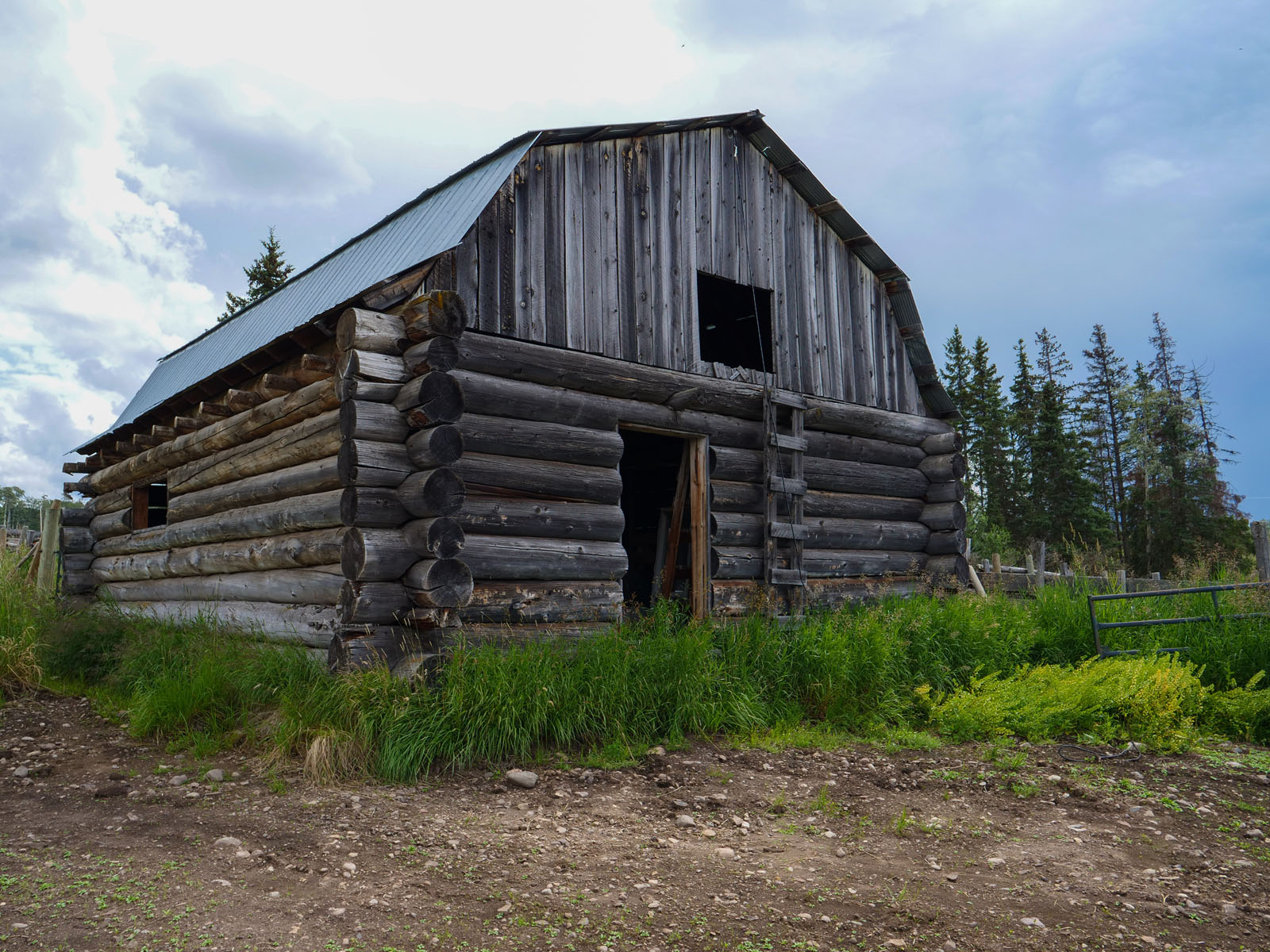 Wistaria cattle ranch 41