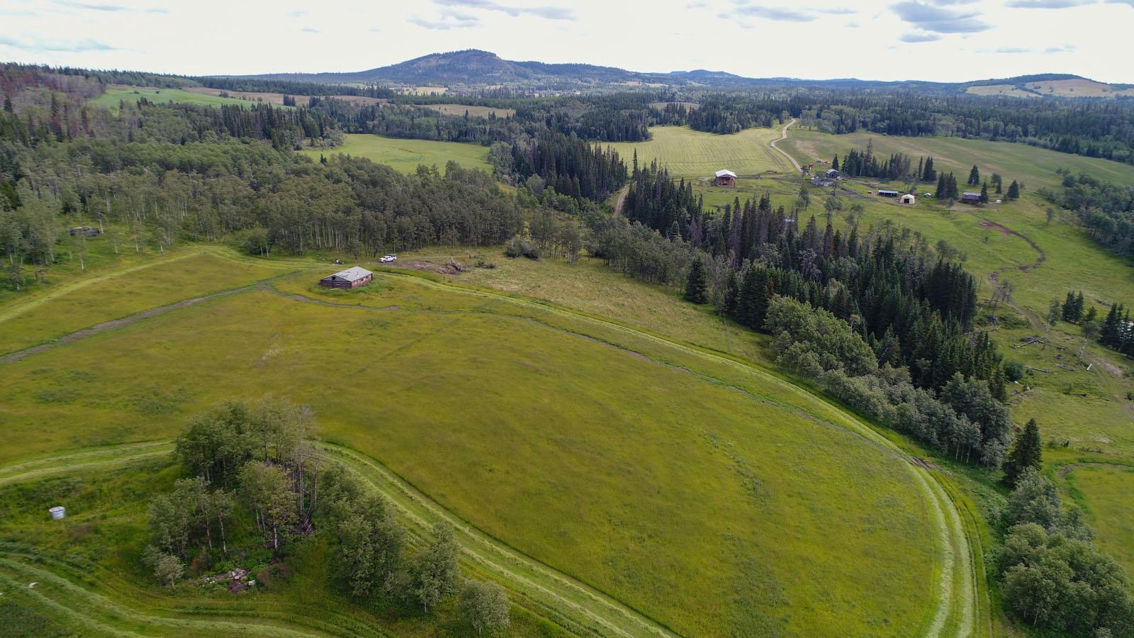 Wistaria cattle ranch 50